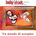 gennaio_09_baby_chick